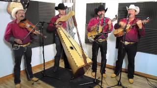 Conjunto De Arpa Grande (Aunque Me Tires Las Garas) Jilgueros Michoacános