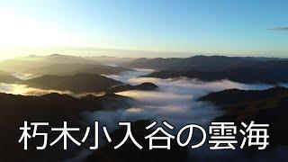 朽木小入谷の雲海【びわ湖源流の郷・高島市より】