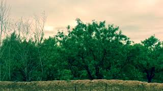 preview picture of video 'فصل بهار سال ١٣٩٧ منطقه لرغان ولايت سمنگان samangan'