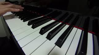ワイルドアットハート☆嵐 Wild at heart / Arashi ピアノアレンジ