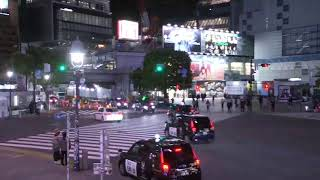 Shibuya Scramble Crossing Live Camera
