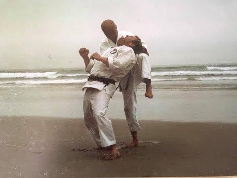 Wado Ryu Karate Techniques