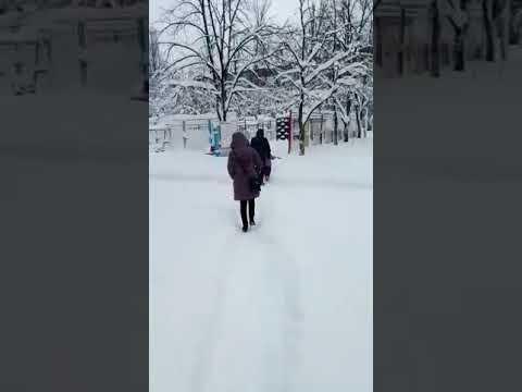 Попытка попасть на работу 19 декабря)