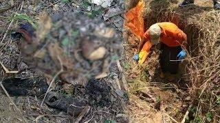 Kerangka Pria Posisi Bertapa di Sajadah Ditemukan di Hutan Grobogan, Ada Surat Nikah di Saku Korban