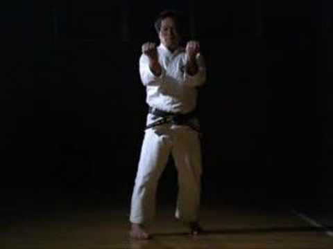 Shito Ryu - Kata Hakkaku
