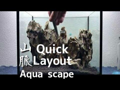 Quick Layout【アクアリウムレイアウト集】Aquascape#9
