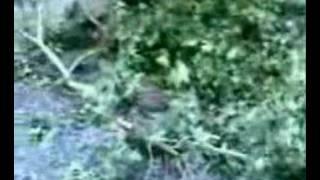 preview picture of video 'Mut'ta siddetli yagmur'