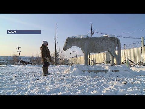 Рядом с Якутском лошадь нашла «друга» в виде скульптуры