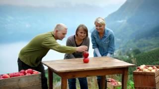 Sunniva Premium Eplejuice Frå Hardanger - Balanse