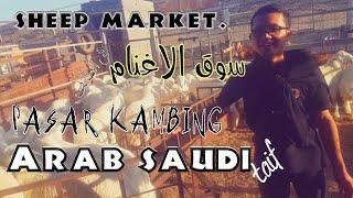 preview picture of video 'الجولة  في سوق الغنم  حراج بالطائف | KEPPO ORANG ARAB HARGA KAMBING'