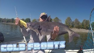 How To Catch Catfish During COLD FRONTS!