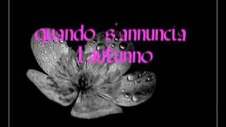 Franco Battiato- Haiku