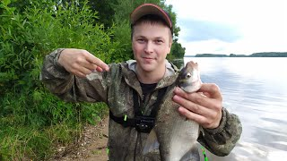 Рыбалка на фидер. Рыбалка летом на Волге 2019! Ловля леща на фидер.