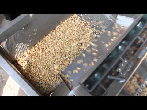 Roasted Peanuts Red Skin Peeling Machine