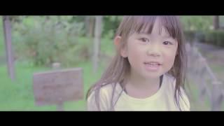 コラボ動画(VIDEOS)追加!