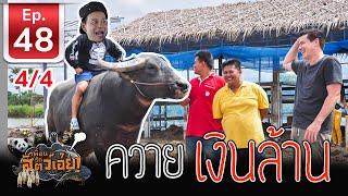 ควายไทยเงินล้าน - เพื่อนรักสัตว์เอ้ย EP 48 (4/4)