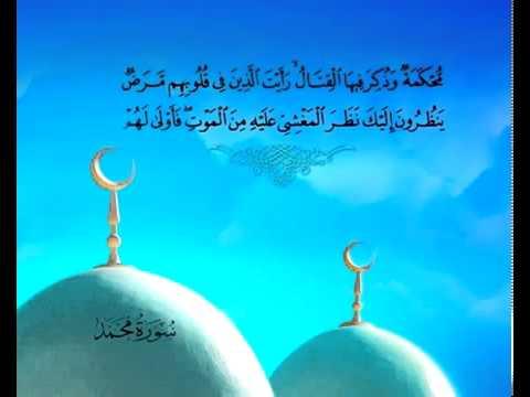 Sura Mohammed<br>(Mohammed) - Scheich / Mischary Alafasi -