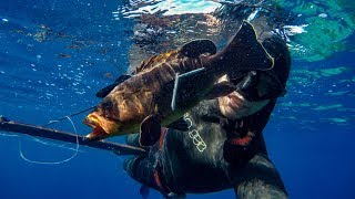 My first time Spearfishing in the Mediterranean Sea - PONZA, ITALY!