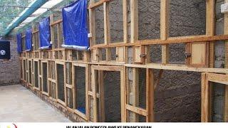 KISAH SUKSES : Belajar Ternak Murai Batu Rumahan Dari AMBB Bandung