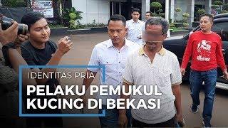 Pelaku Penganiaya Kucing di Bekasi Diringkus Polisi, Ini Identitasnya