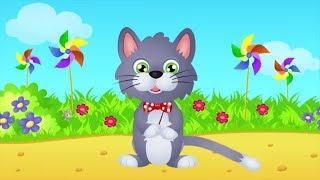 Video Bajkowe teledyski dla dzieci - Wlazł kotek MP3, 3GP, MP4, WEBM, AVI, FLV Agustus 2019