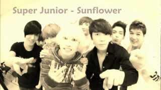 Super Junior - Sunflower (English Lyrics)