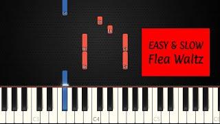 Flea Waltz / Flohwalzer | SLOW EASY Piano Tutorial by JohnnyMusic