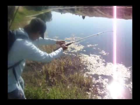 Hmong Fishing at Marrysvile Pond