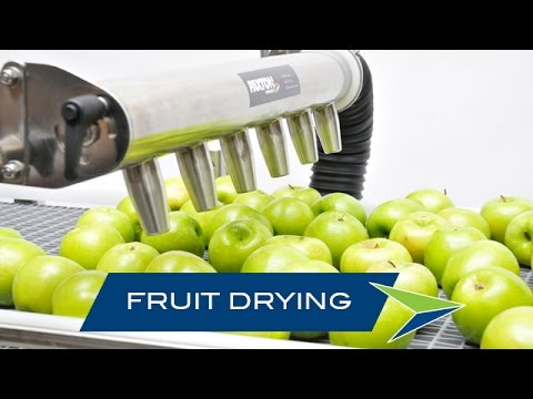 Fruit & Vegetable Drying With Air Knife