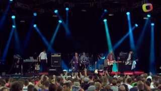 Spector - Lay Low - Benicassim Festival, 15 Jul 2012