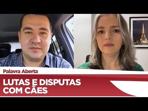 Ricardo Silva quer proibir corridas, lutas ou disputas utilizando cães - 24/03/21
