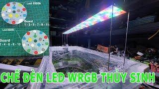 Hướng Dẫn Chế Đèn Led WRGB 1,2M cho Bể Thủy Sinh