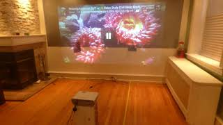BEFORE YOU BUY A PROJECTION SCREEN YOU NEED TO SEE THIS DEMONSTRATION!