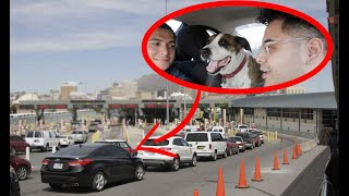 We Crossed The Border Into Mexico With My Puppy, Did they Allow us Back?