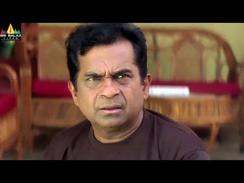 Brahmanandam Comedy Scenes Back to Back | Pallakilo Pellikuthuru Movie Comedy | Sri Balaji Video