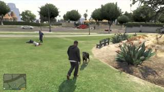 GTA 5 - Playing With The Dog
