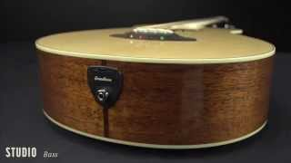 Breedlove Guitars: Studio Bass Acoustic Guitar