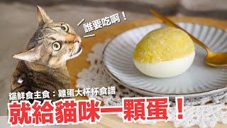 直接給貓咪一顆蛋!短褲暴怒!【貓主食食譜】好味貓鮮食廚房EP174