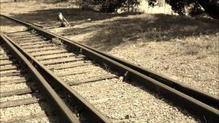 ghost towns along the highway - john mellencamp - on the rural route 7609 collection