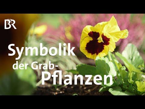 Ideen fürs Grab: Die Symbolik der Pflanzen   Zwischen Spessart und Karwendel