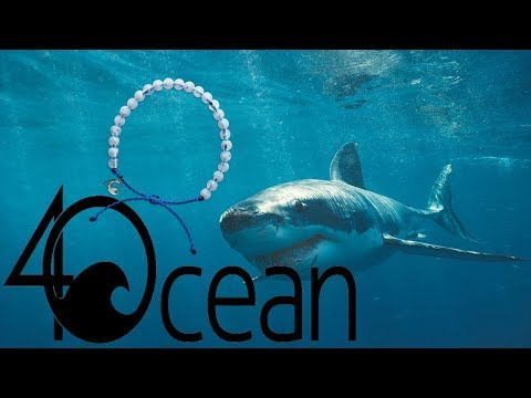 4Ocean Shark Bracelet Unboxing and Review!