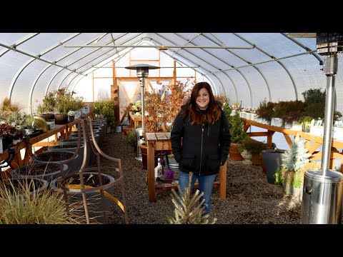Winter Greenhouse Tour! ❄️🌿// Garden Answer