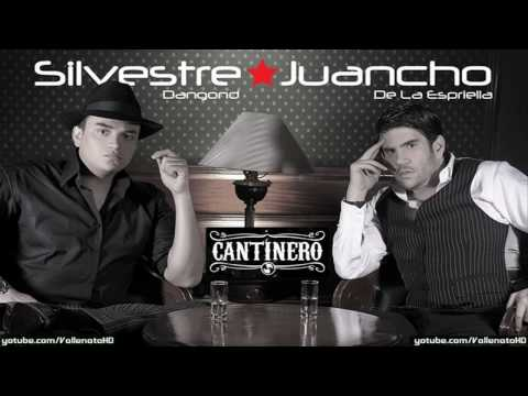 Has Cambiado Mi Vida - Silvestre Dangond (Video)