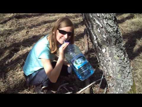 Молот тора можно ли пить женщинам