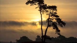 Tahiti - Voices Of Paradise - Dan Gibson's Solitude [Full album]