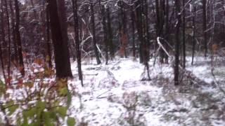 Офф-роуд по лесу 2108 и 2111