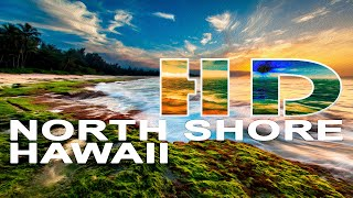 North Shore  Oahu  Hawaii  United States  A Travel Tour  Hd 1080p