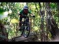 Mount Keira Shreds