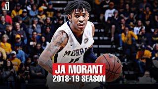 Ja Morant  Murray State Sophomore Season Highlights Montage 2018-19 - 24.5 PPG, 10.0 APG, Point-GOD!