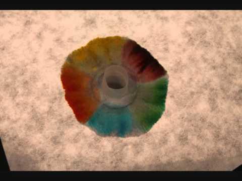 "Experiment: ""Filzstiftrennen"" - Chromatographie"